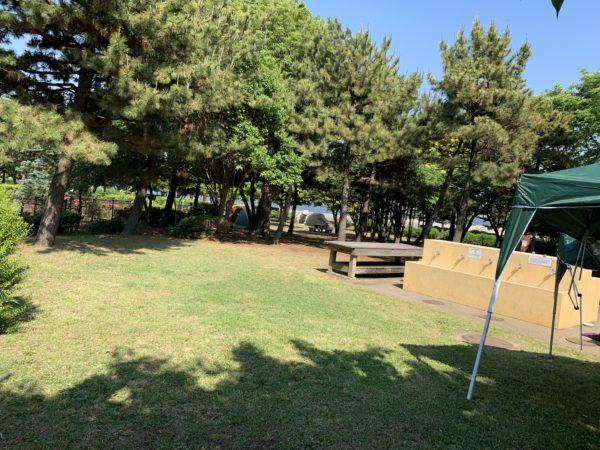 城南島海浜公園キャンプ場きれいに整備された芝生