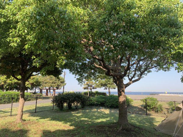 海が近い城南島海浜公園キャンプ場